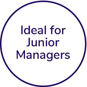 Ideal for junior managers icon